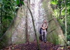 "In front of one of the ""baby"" samaúma trees that grow to massive scale in the Amazon."