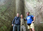 With trek-mates Richard and Leonardo at trail's end in Tapajós National Forest in front of a 900-year old samaúma tree.
