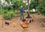 Richard's new friends after opening a bag of crackers. Seemingly all of Maguarí's chickens swarmed him.