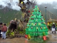 A Christmas tree made from recycled plastic bottles and a nativity scene that paled in size to the one in my guesthouse