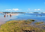 Low tide at Quarta Praia makes for some warm pools and great snorkeling