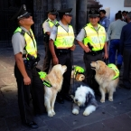 Good cops in Quito's Old Town
