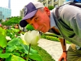 1Paul with a lotus, the national flower of Vietnam and in bloom all over HCMC