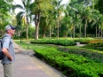 Manicured gardens are well maintained all over HCMC