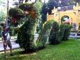 Dragon topiary chasing Paul