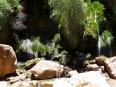 Me beneath the spring-fed crystalline waters of El Vergel