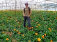 Looking butch in a flower farm in the Central Highlands of Vietnam