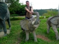 Riding the wild elephants on a stop in the Central Highlands of Vietnam, this was a feisty little bugger!