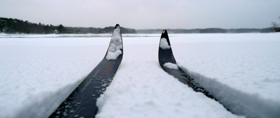 Skiing to Brave Boat Harbor during the January 2011 nor'easter