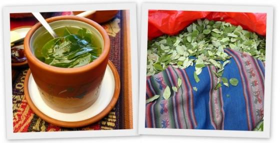 Coca tea, coca leaves... the perfect cure for altitude sickness!
