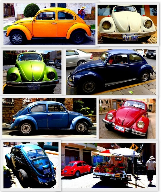 Volkswagen Bugs in Bolivia 1