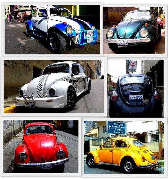 Volkswagen Bugs in Bolivia 2