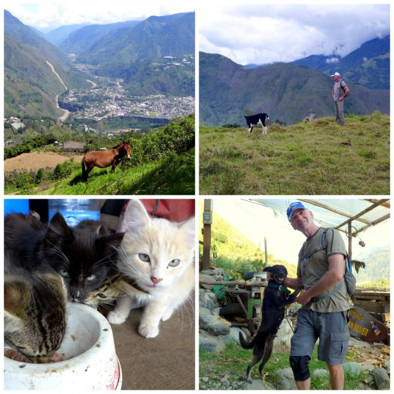 Pastoral view of Baños from the other side of the valley ~ Paul getting directions from a local ~ Farm kittens enjoying the surplus of our tuna-fish lunch ~ Paul and a new friend he met along the way