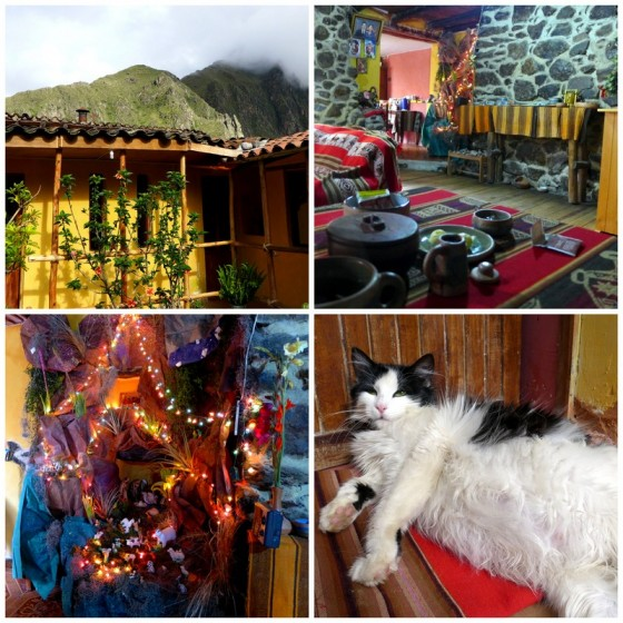 Rumi Wasi Guesthouse in Ollantaytambo: Sunny balconies ~ Cozy stone living room ~ Larger-than-life Navitivity ~ Preggers cat ready to pop