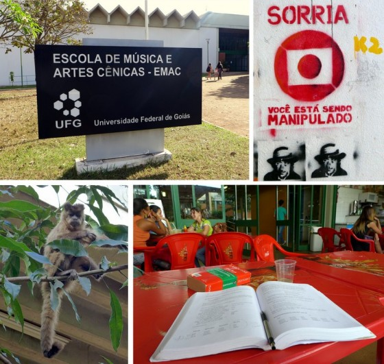Scenes from the Federal University in Goiânia: student graffiti, monkeys, and a shady café to study Portuguese